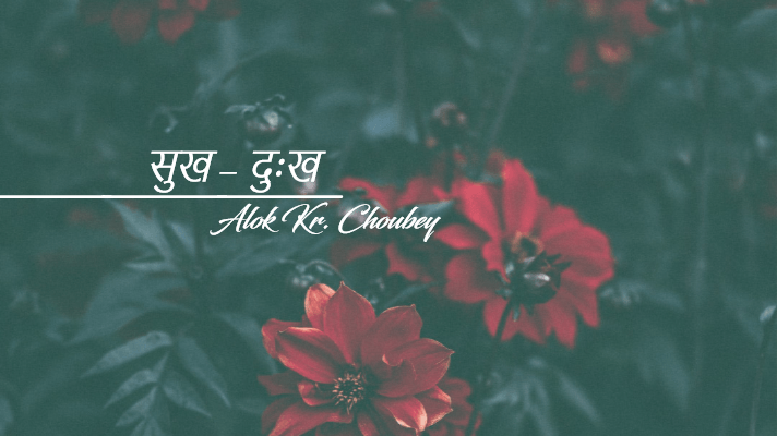 sukh dukh navalok blog